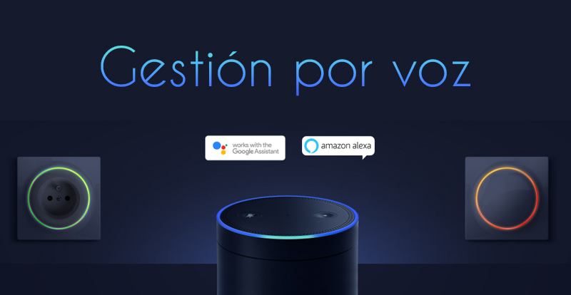 Amazon Alexa, Google Home, para Z-Wave