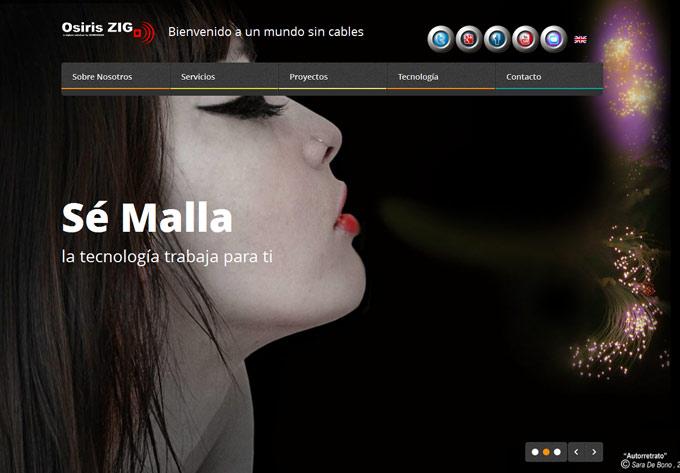 OsirisZig project